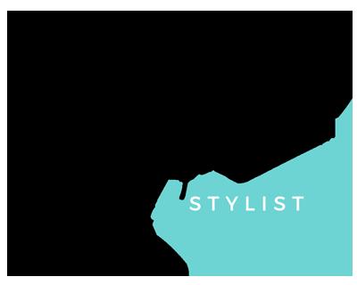 DigitalStylist – Web Agency Logo